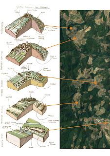 Localizzazione tipologie morfologiche del territorio Chianti