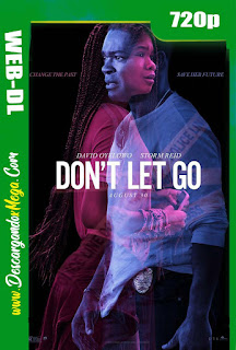 Don't Let Go (2019) HD [720p] Latino-Ingles