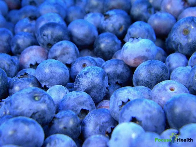 Are Blueberries Good For Your Health - Health benefits of blueberries