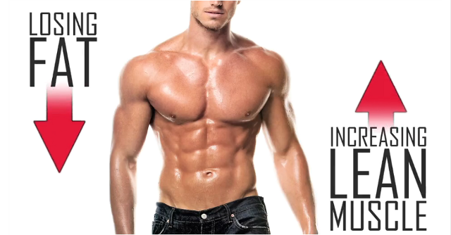 Build Muscle Lose Fat