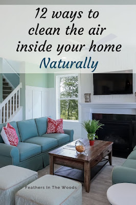 ways to clean indoor air naturally