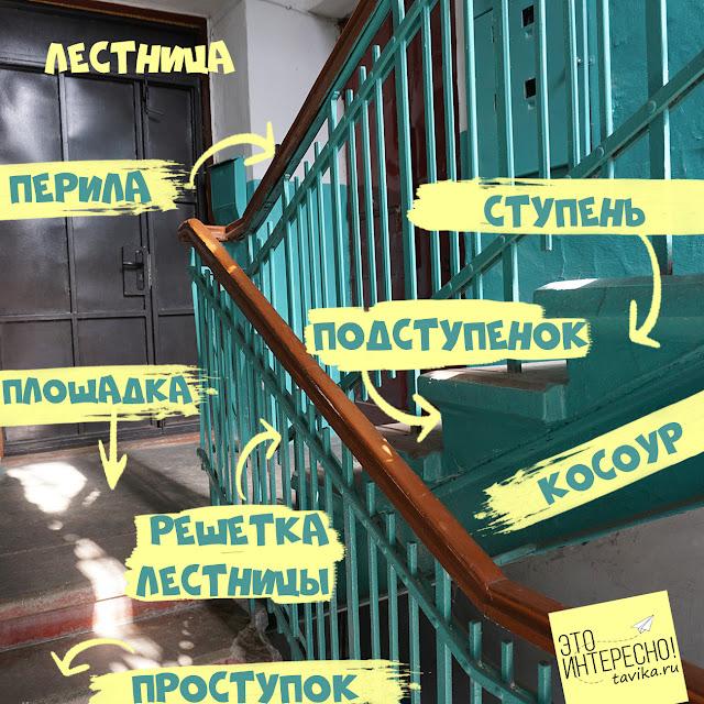 Строение лестницы на косоурах