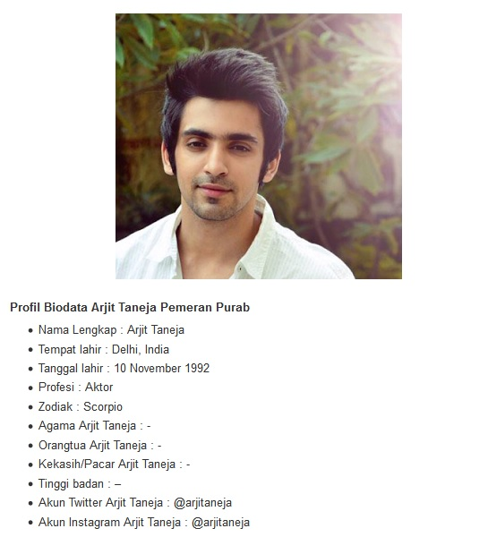 Profil Biodata Arjit Taneja Pemeran Purab