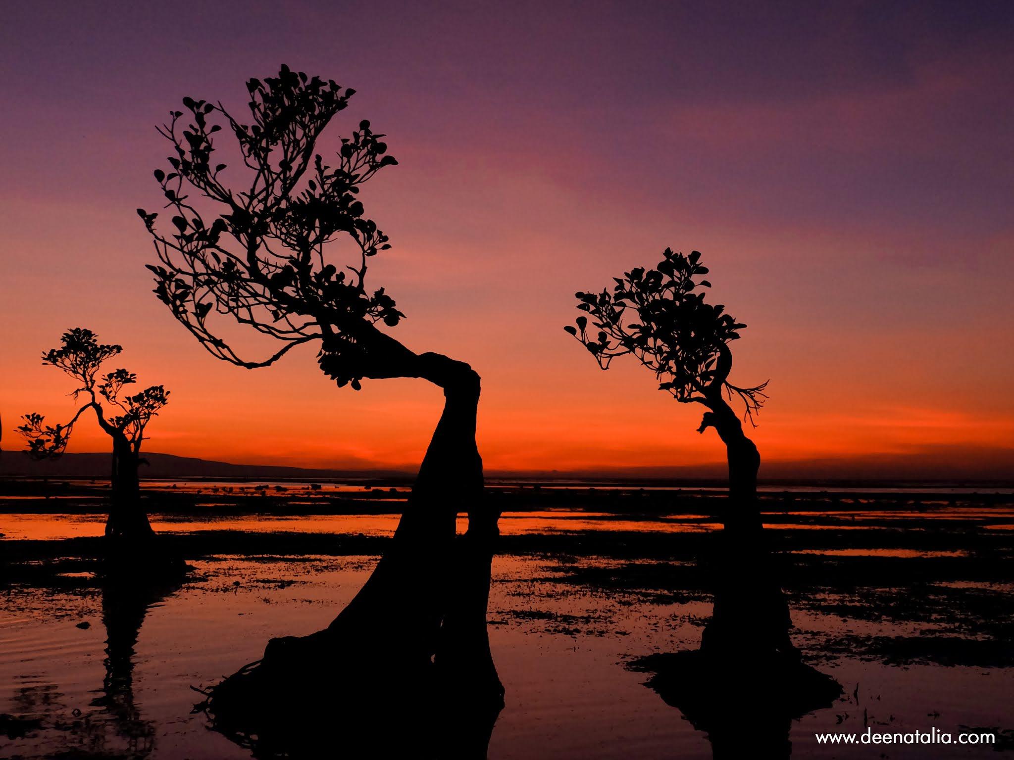 Pantai Walakiri Sumba