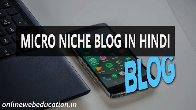 Micro Niche Blog Kya Hai  Kaise Paise Kamaye