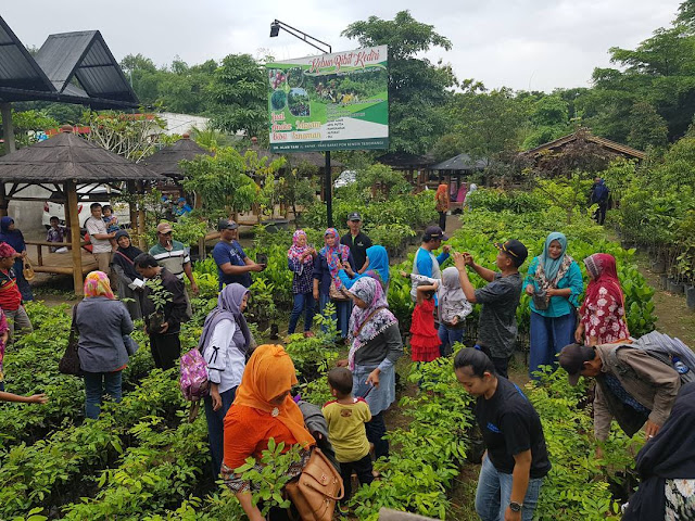tempat wisata kebun bibit kediri jawa timur