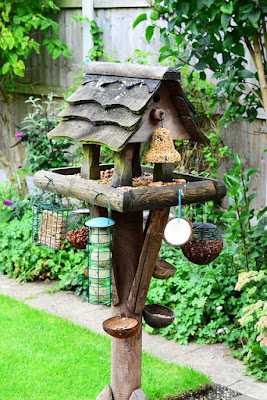 Photo of a bird feeding station with lots of food but no birds