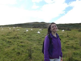 Bárányok közt