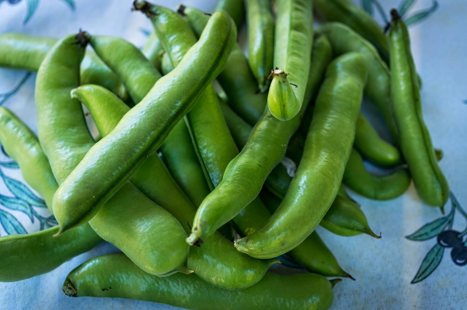 färska bondbönor recept