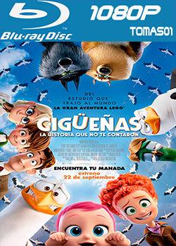 Cigüeñas: La historia que no te contaron (2016) BRRip 1080p