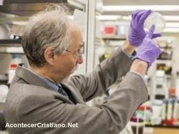 Creación de un cromosoma a partir de levadura sintética