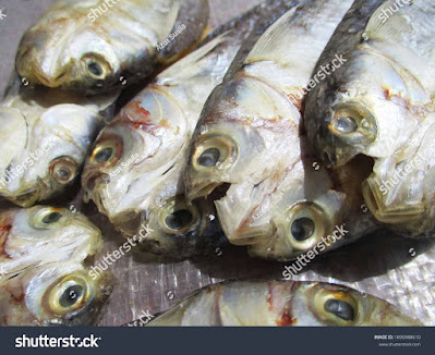 stock-photo-traditional-salted-fish-processing-does-not-use-formalin-1895988610