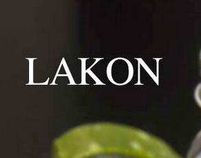 http://lakon-maski.pl/index.html#home