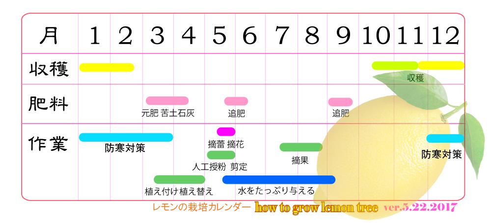 レモンの育て方 栽培カレンダー