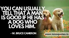 Sentimental Dog Quotes