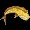 Виды рыб в «The Sims 4» - каталог с кодами для любителей рыбалки