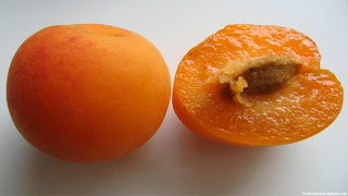plumcot fruit images wallpaper