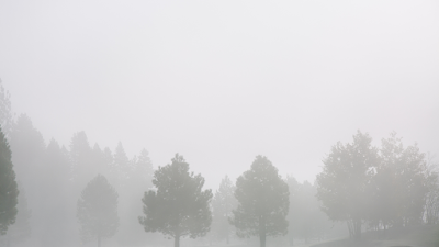 Brain Fog and Celiac Disease