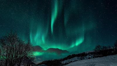 HD Wallpaper Winter Northern Lights, Night, Snow, Nature