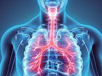 Tracheal Cancer Life Expectancy