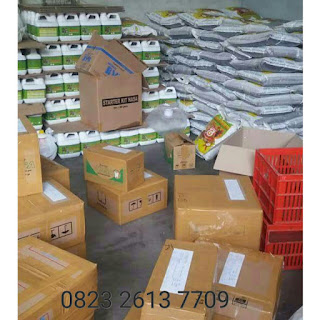 distributor nasa di sawah lunto sumantera barat