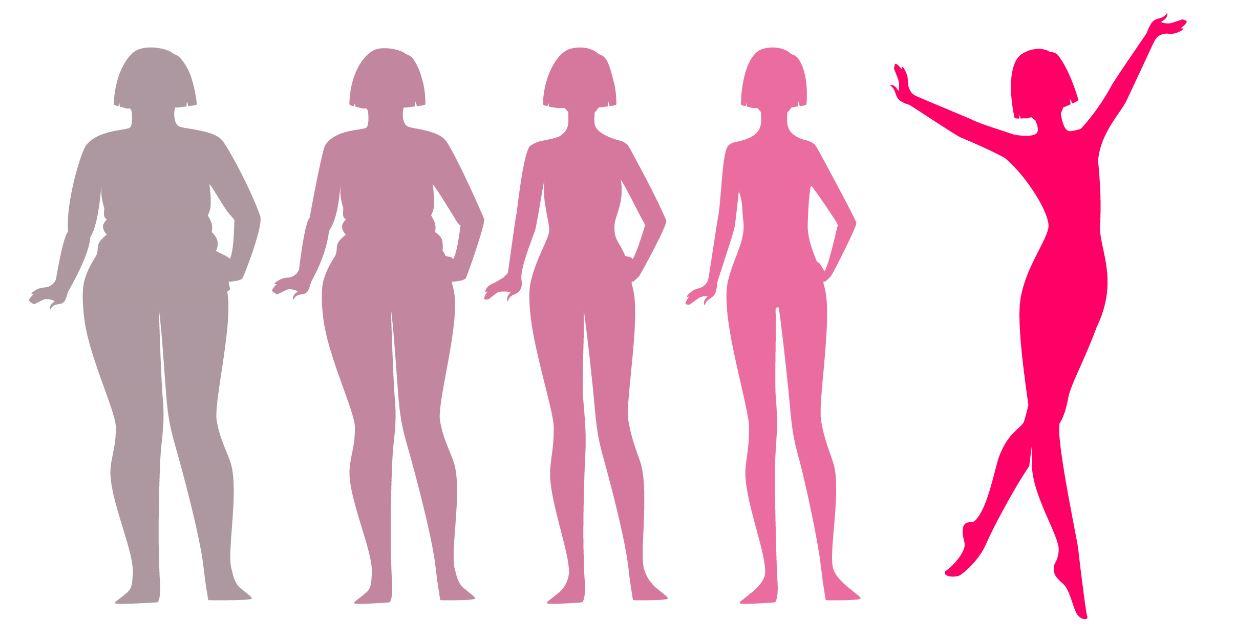 эволюционное похудение