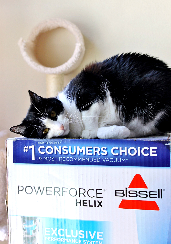 The $47.84 Bissell PowerForce Helix has powerful suction, a generous sized dust bin, and a 12lb lightweight frame, for budget flexibility and lasting functionality. #BissellClean #AD https://ooh.li/69ed1fa