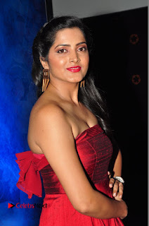 Actress Pavani Pictures in Red Long Dress at Jo Achyutananda Movie Audio Launch  0103.JPG