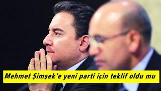 Ali Babacan, Mehmet Şimşek'e yeni parti için teklifte bulundu mu