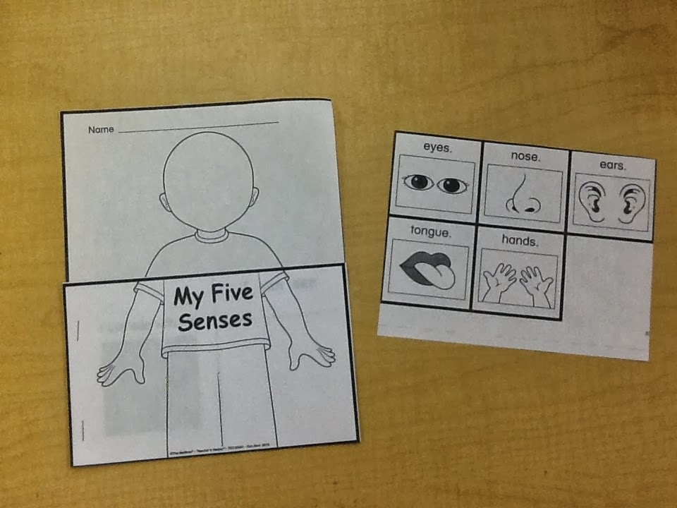 Five Senses Printable Book