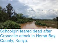 https://sciencythoughts.blogspot.com/2019/02/schoolgirl-feareddead-after-crocodile.html