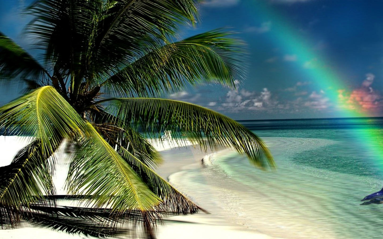 "LINKAMIGRATIS: 9 Sfondi Desktop ""Spiagge Tropicali"" 1440x900"
