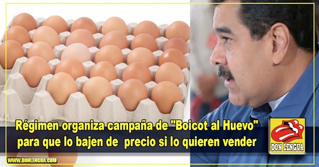 """Régimen organiza campaña de """"Boicot al Huevo"""" para que lo bajen de  precio si lo quieren vender"""