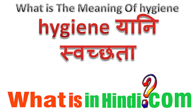 What is the meaning hygiene in Hindi