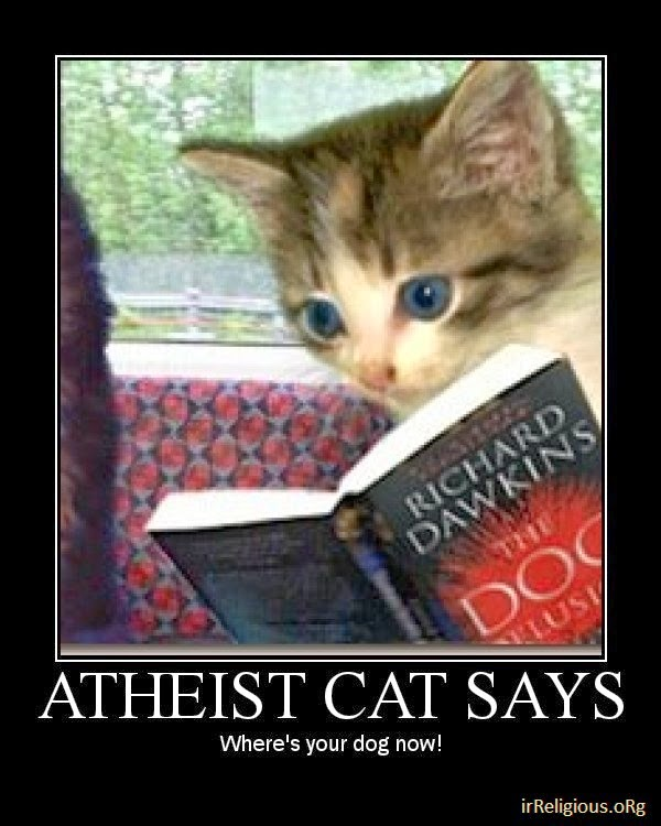 Funny Atheist Cat: The Dog Delusion Joke Meme Picture - Richard Dawkins