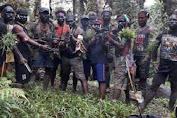 TNI :  KKSB Terapkan Taktik Licik  dan Mengorbankan Masyarakat Sipil