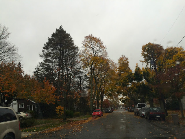 A-Very-Rainy-Autumn-Long-Island-Day
