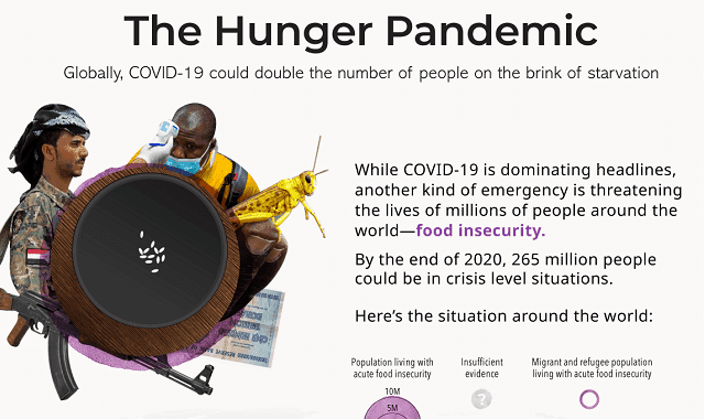 A Pandemic of Hunger #infographic