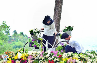 Wisata Bukit Bulu dan Batu Flower Garden Malang Jawa TImur