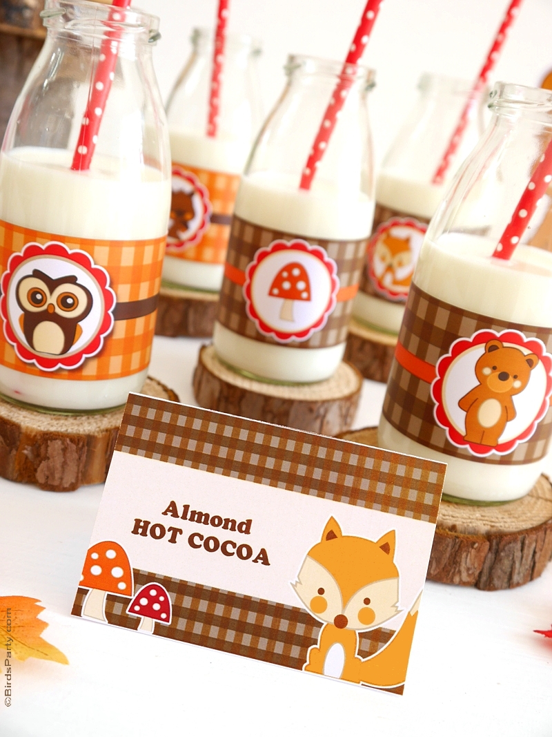 Woodland birthday party ideas video party ideas for Animal party decoration