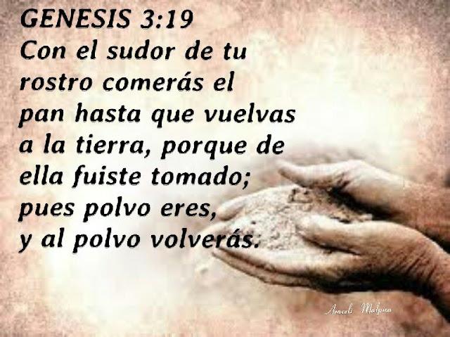 genesis biblia catolica