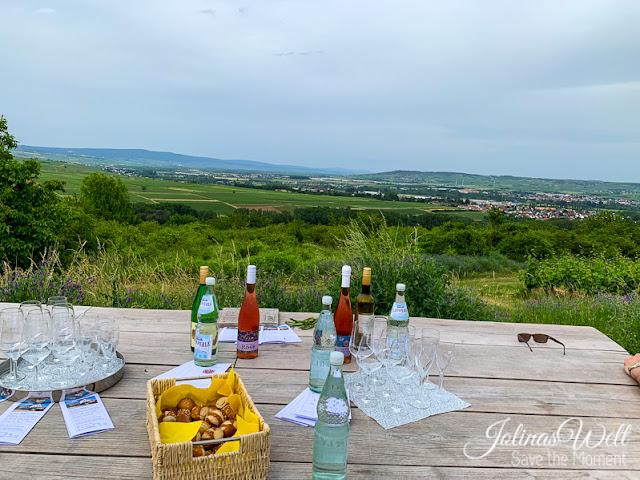 Wein am Rheingaublick - Eremitenpfad
