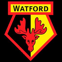 Watford F.C. logo 256x256