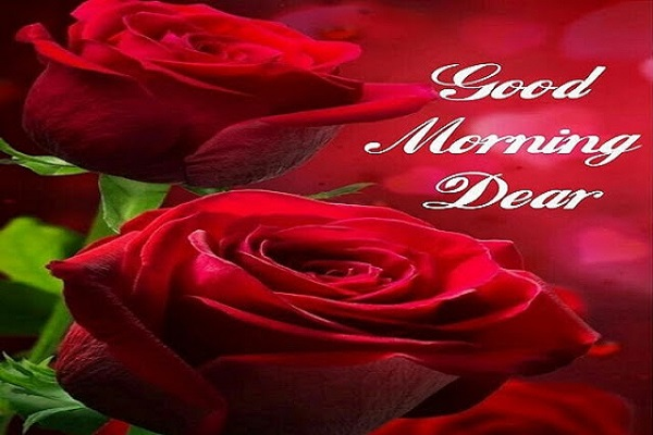 {84} Good Morning Images HD, Quotes, Whatsapp Download