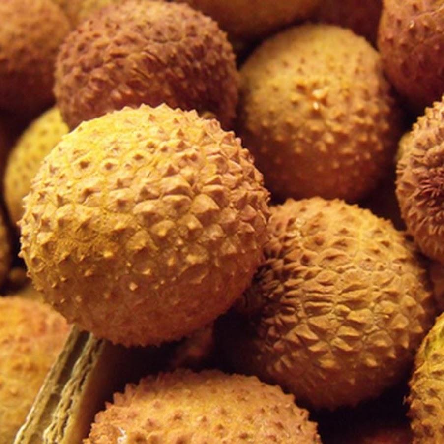 biji benih bibit buah kelengkeng aroma durian 10 biji Kalimantan Barat
