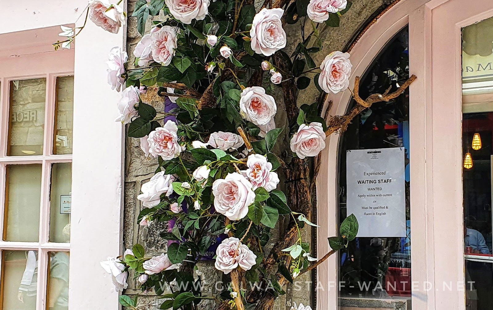 Delicate light cherry-blossom-pink roses framing an arch-style restaurant doorway - with a waitressing staff-wanted sign in the window
