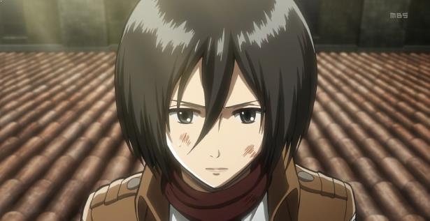 Mikasa Ackerman ( Shingeki no Kyojin )