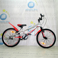 20 Inch Family Eaglehawk BMX Bike
