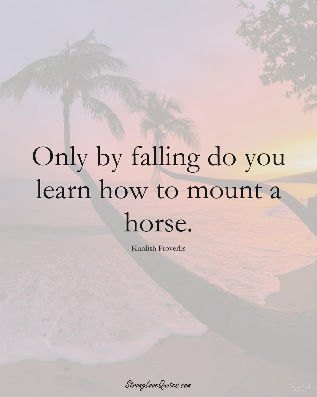Only by falling do you learn how to mount a horse. (Kurdish Sayings);  #aVarietyofCulturesSayings