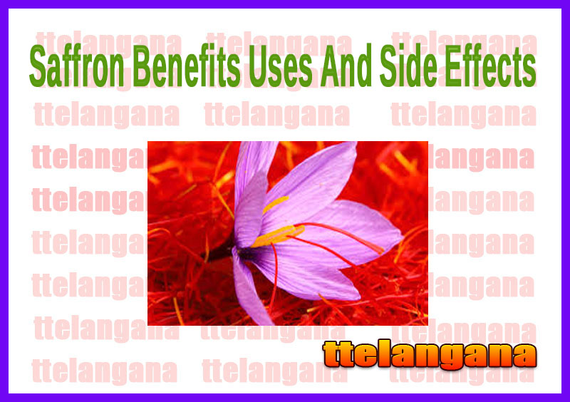 Saffron Benefits Uses And Side Effects